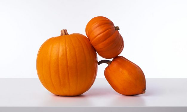 Well Hello There, Gourd-geous!